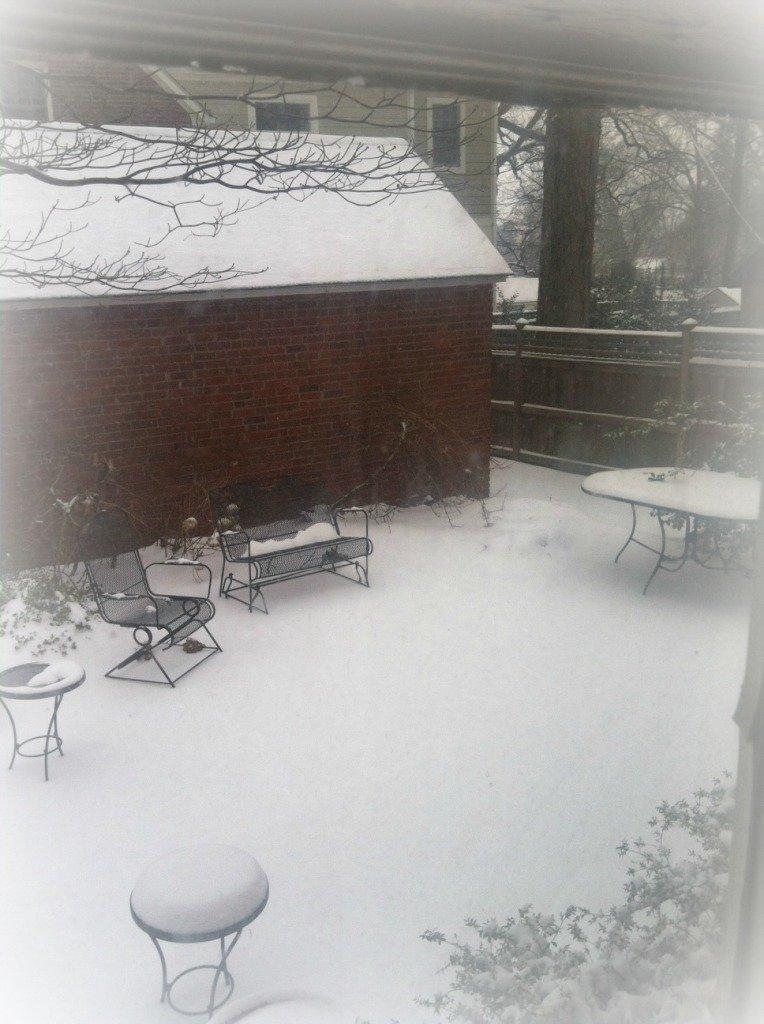 snowy_DC