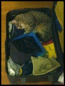 ella-suitcase