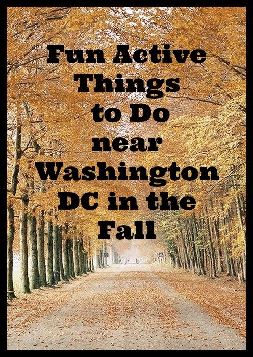 fun-active-washington-dc