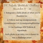 Join me for some holiday challenges!