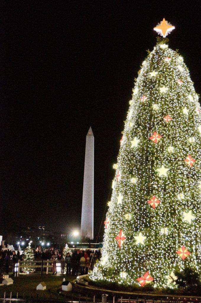 Visiting the National Christmas Tree