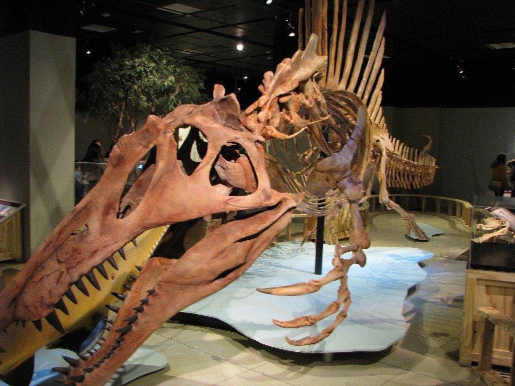 National-Geographic-Spinosaurus