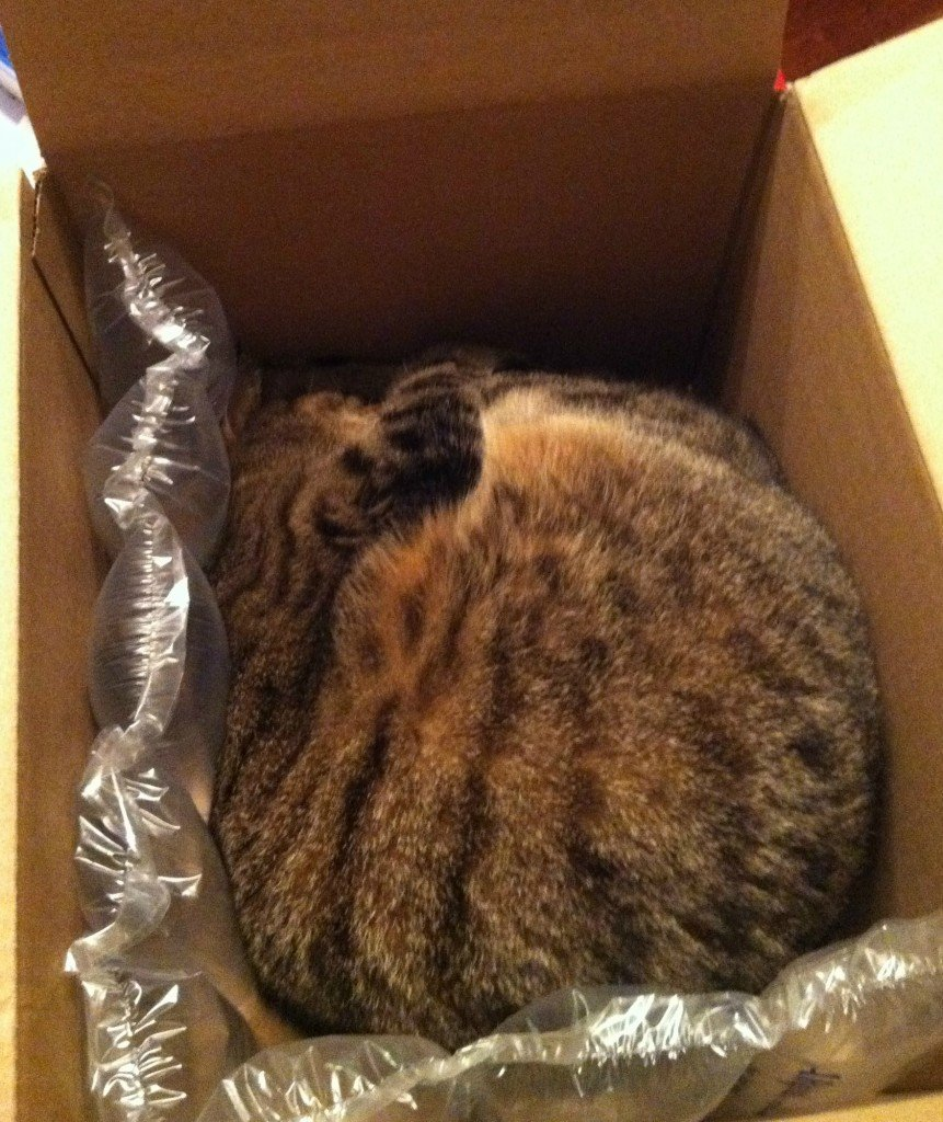 ella-in-a-box