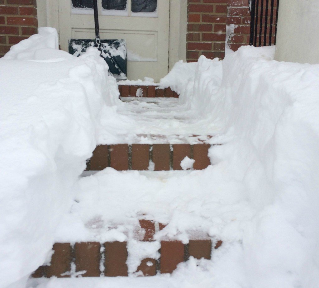 Saturday snowzilla front steps