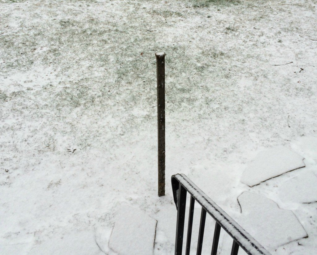 Snowzilla begins
