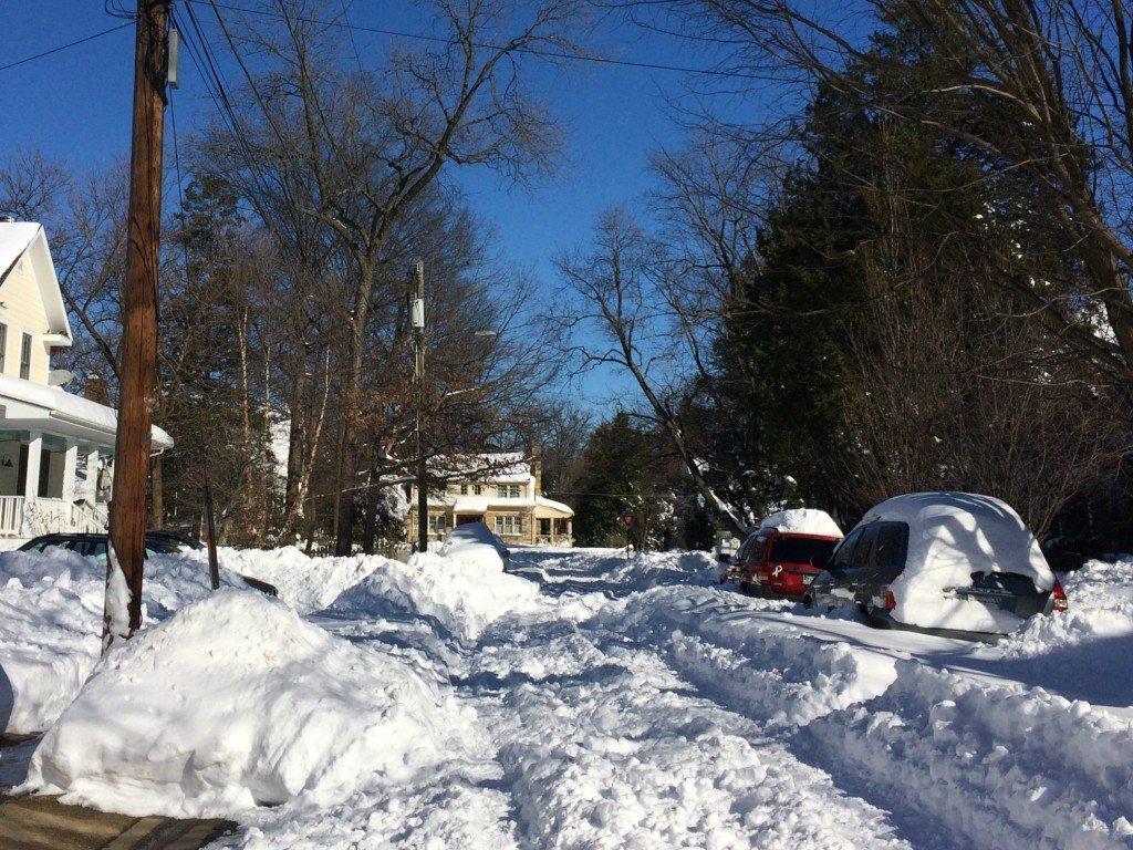 Snowzilla walk