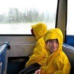 Mostly wordless Wednesday: the rainy days