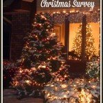 A Very Merry Christmas Survey