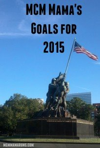 2015 Goals in Review