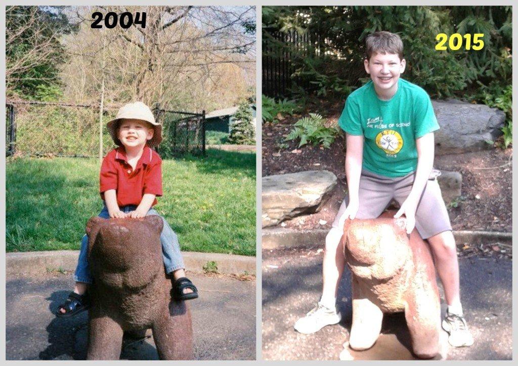 Jones National Zoo