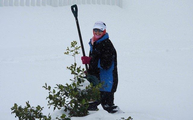 Saturday snowzilla shoveling
