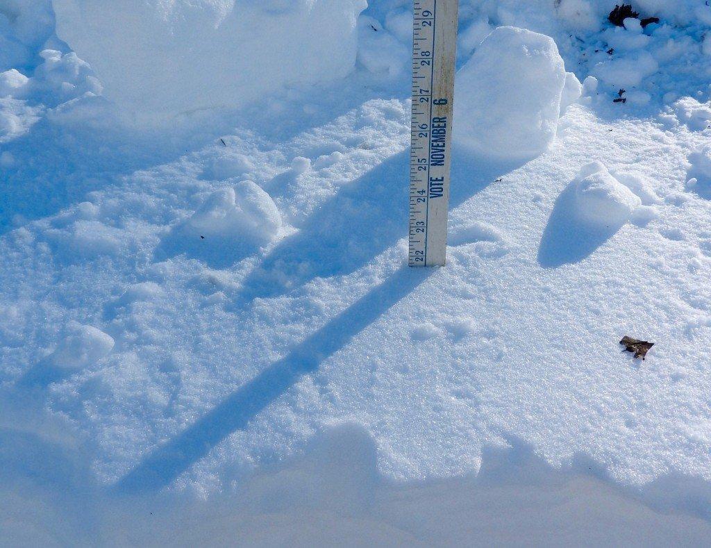 Sunday snowzilla measurement