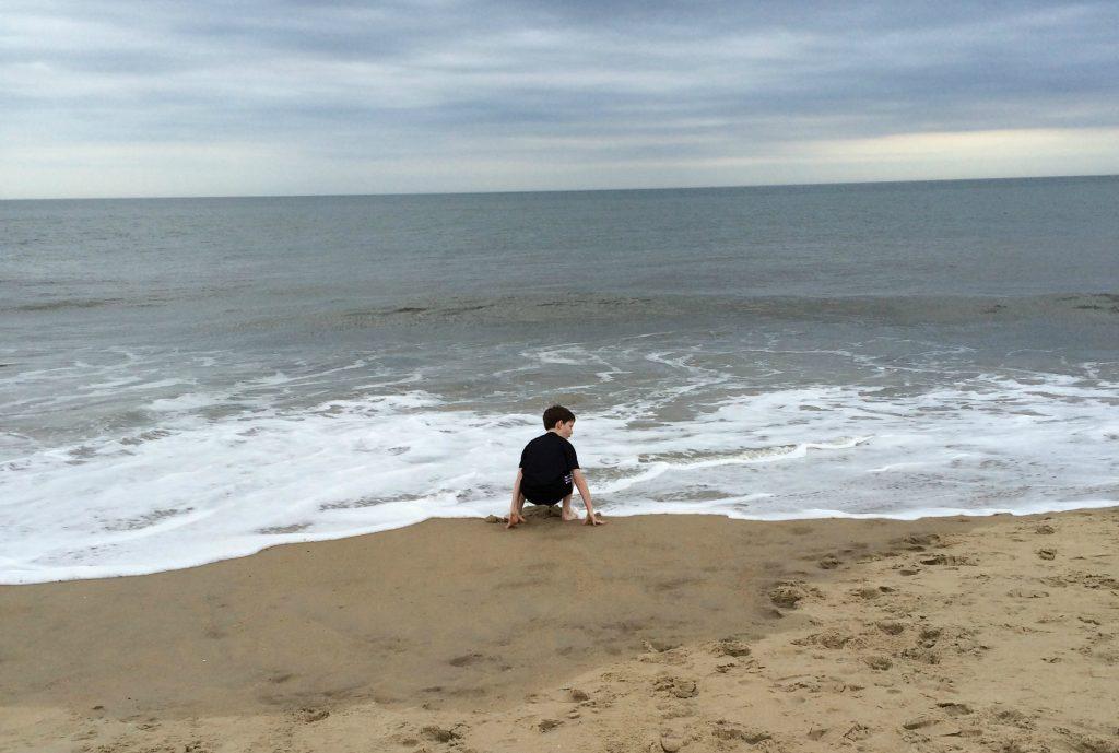 Delaware Coastal shoo