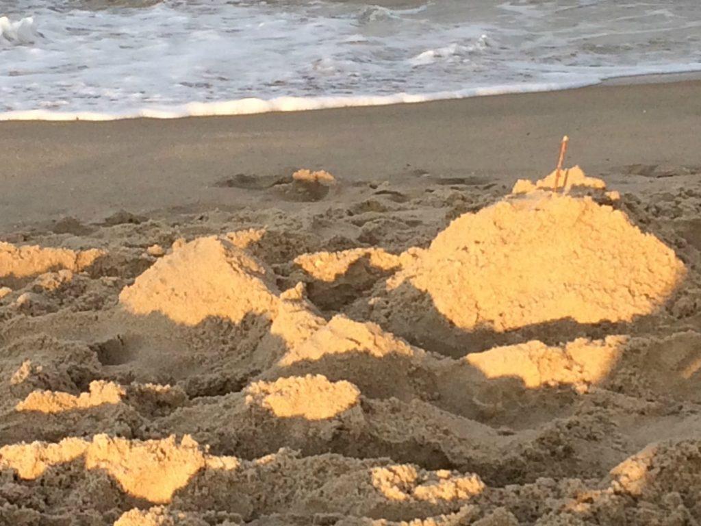 Shoo Sand castle